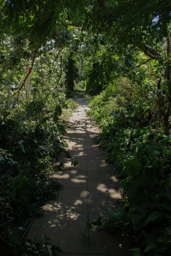 Twister Archway